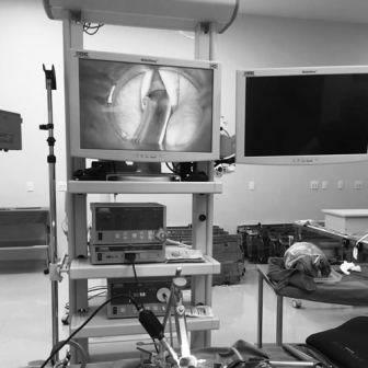 Curso de Micro Cirurgia de Laringe